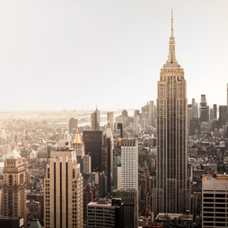 Emerging Leaders of New York Award
