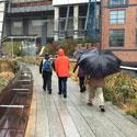 High Line Urban Tour
